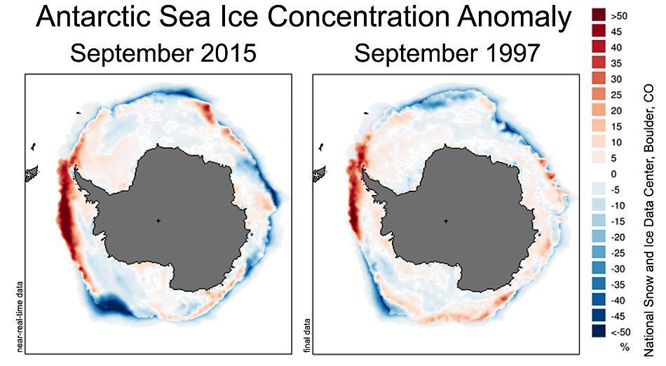Die Abbildungen vergleichen die antarktische Meereiskonzentration für September in zwei starken El Niño Jahren (2015, links; 1997, rechts), die Jahre 1981 bis 2010 dienen als Durchschnitt. Die Farben zeigen die prozentualen Abweichungen vom Mittelwert der Meereiskonzentration in der Antarktis. Orange und Rottönt zeigen Konzentrationen höher als der Durchschnitt, Grün- und Blautönen zeigen Konzentration niedriger als der Durchschnitt an. Abbildung: National Snow and Ice Data Center