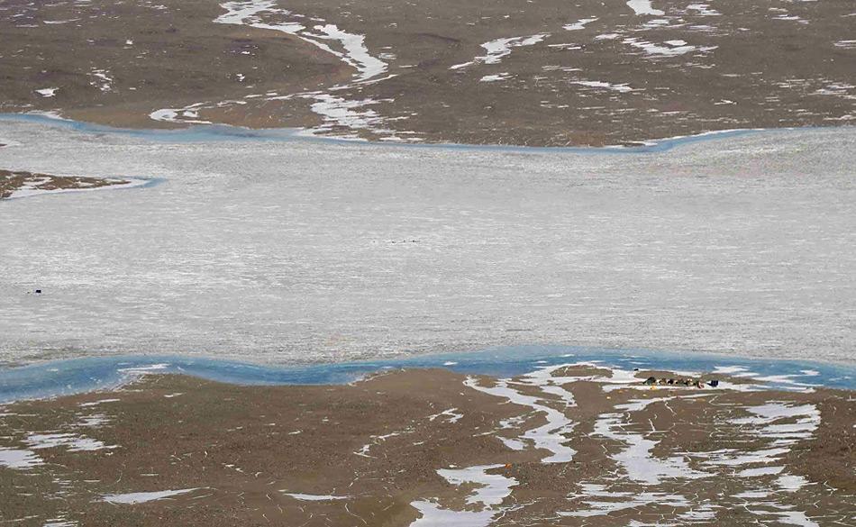 Bei den Tauchgängen am See haben zwei Forscher in einer Umgebung, die wie die Erde vor 2.5 Milliarden Jahren ist, Sauerstoffoasen gefunden. Bild: Tyler Mackey, UC Davis