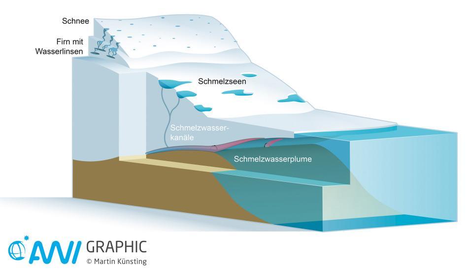 Gletscher mit einer schwimmenden Eiszunge findet man hauptsächlich im Norden Grönlands. Sie verlieren Masse vor allem an der Ober- und Unterseite. An der Oberfläche schmilzt das Eis aufgrund der wärmer werdenden Luft; an der Gletscherunterseite aufgrund des wärmer werdenden Meerwassers. Grafik: Martin Künsting/Alfred-Wegener-Institut CC-BY 4.0