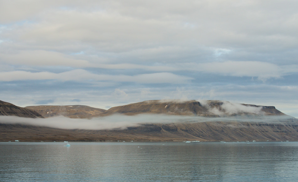 Der grösste Teil der Insel ist ohne Vegetation und besteht aus Permafrostboden. Auf der Insel finden sich Lemminge und Moschusochsen und den bekannten Haughton-Meteorkrater. Bild: Michael Wenger