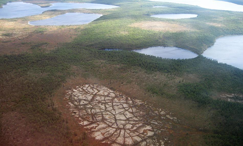 Eine Luftaufnahme mehrerer Thermokarst-Seen und eines leergelaufenen Thermokarst-Beckens in der sibirischen Kolyma-Region. Durch Erosion, Tauprozesse und Sedimentablagerungen verändern sich die Seen ständig, was irgendwann dazu führt, dass sie leerlaufen. Foto: Guido Grosse, AWI