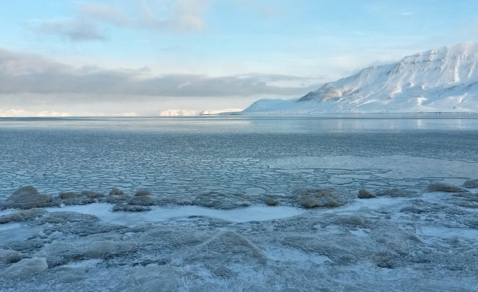 Die Fjorde in Svalbard und in vielen anderen Gebieten frieren normalerweise ab November zu. In diesem Winter aber sind weite Gebiete der Arktis sogar noch im Dezember eisfrei gewesen aufgrund hoher Wasser- und Lufttemperaturen und südlichen Winden. Bild: Michael Wenger